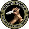 Arnes Diablo Online